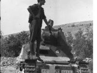 1/35 軽戦車 L6/40 カーロ・アルマート プラモデル キット一覧